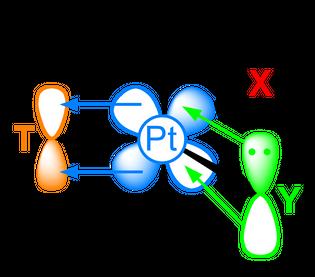 trans-effect-trigonal-bipyramidal-intermediate-pi-orbitals-2d.png