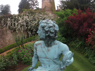 unusual-in-the-garden.jpg