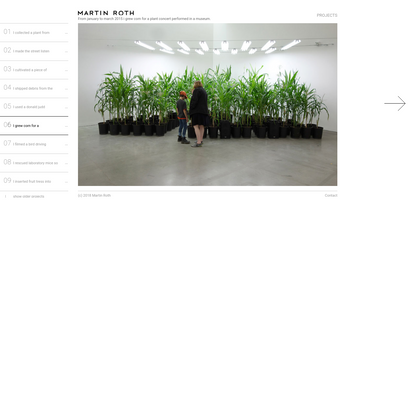 I grew corn for a plant concert.   Martin Roth - Art Projects