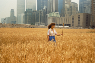 agnes-denes-wheatfield-a-confrontation-battery-park-landfill-downtown-manhattan-1982-1280x862.jpg