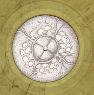 logo_6.jpg