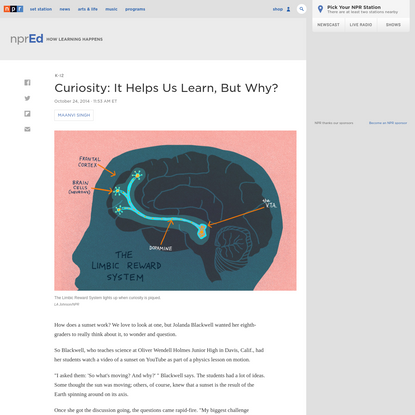 Curiosity: It Helps Us Learn, But Why?