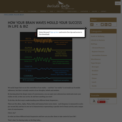 How Your Brain Waves Mould Your Success In Life & Biz