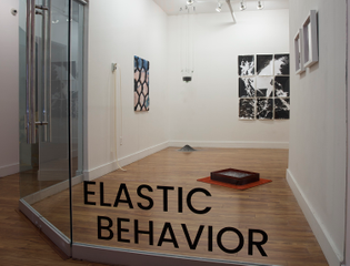 elasticbehavior_installshots_july_2018_dsc4521.jpg