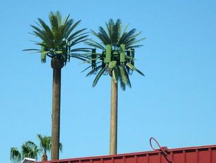 antenna_tree_mast38a.jpg