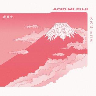 Susumu Yokota - Acid Mt. Fuji (remastered), by Midgar Records