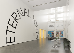 eternal-youth-at-mca-chicago-3-700x500.png