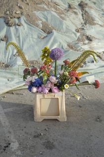 rosalina serup - flora1