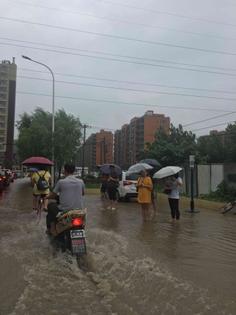 Flash Flood Bus Stop