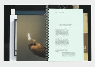 gagosian-gallery-douglas-gordon-k.-364-2012-publication-graphic-thought-facility-8.jpg