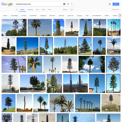 cell phone tower trees - Google Search