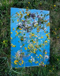 Brea Souders, Mille Fleurs, 2011