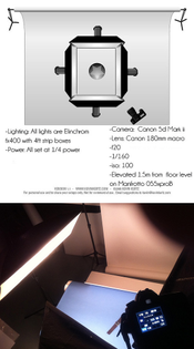 Leather Contemporary Watch - Strobist / Lighting Setup