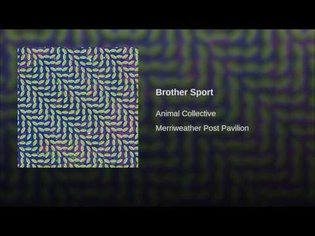 Brother Sport