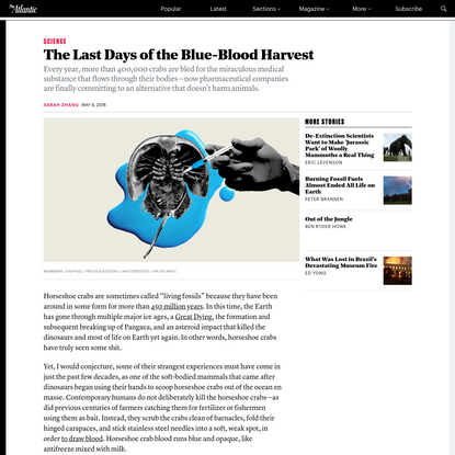 The Last Days of the Blue-Blood Harvest