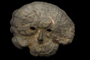 Ceremonial fungal mask
