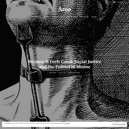 Because It Feels Good: Social Justice and the Politics of Shame - Areo