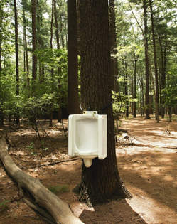 David Hammons, Toilet Tree