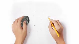 wwf-erase-extinction-miami-ad-school-student-work-2015-2.jpg