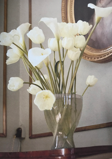 Tulips and arum lilies