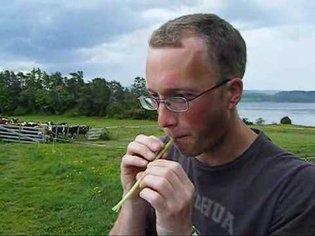 Magnus plays the dandelion flute.wmv