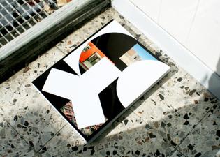 alexis_mark_yale_perspecta-50_urban-divides_1.jpg