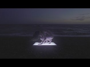 Penelope Trappes - Connector