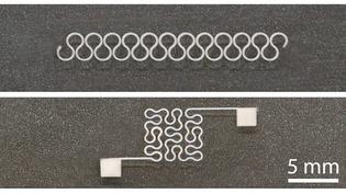 zhu-silver-printing-header-600w.jpg