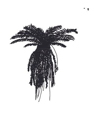 wheki-ponga-scan.pdf