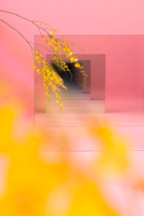 pink_with_yellow_test2_flat.jpg
