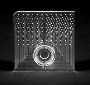 150micron_microfluidics_chip.jpg