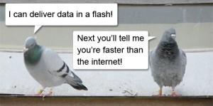 pigeon-faster-than-internet-300x149.jpg