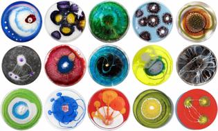 microbe-art.jpg