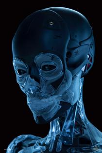 GITS - Major Skeleton, two