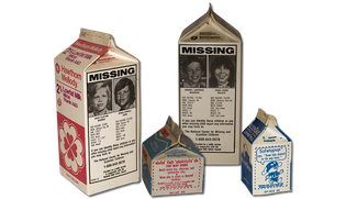 missing-child-safety-council1.png