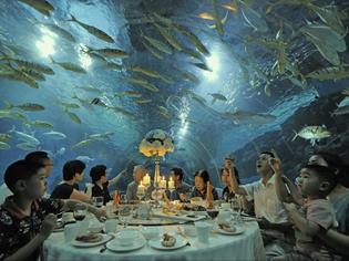 underwater-dining.jpg