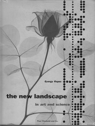 The-New-Landscape.pdf