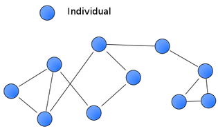 Individuals in groups are connected to each other by social relationships.