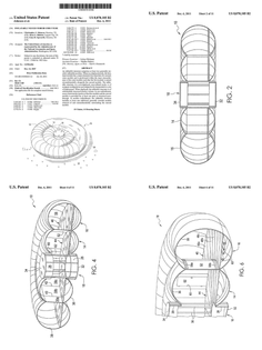 Patent #US8070105B2 - inflatable nested toroid structure