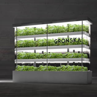 The Nordic's first ever vertical farm in store is getting launched TODAY💥 We are so psyched about this!! A while back we tea...
