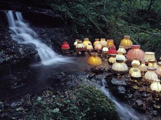 Mushrooms; Mush Rooms