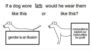 if-a-dog-wore-facts-would-he-wear-them-like-33123396.png