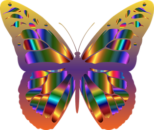 kissclipart-iridescent-monarch-butterfly-15-hoodies-sweatshi_dd1da1.png