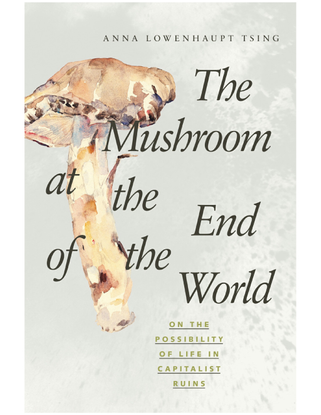 tsing-the-mushroom-at-the-end-of-the-world.pdf
