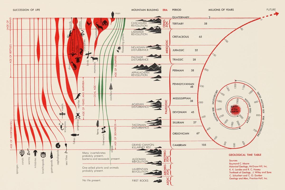 Geologic Range and Succession of Life