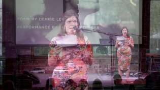 """The Universe in Verse: America Ferrera reads """"Sojourns in the Parallel World"""" by Denise Levertov"""