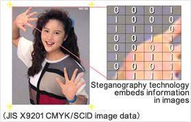 stegano02.jpg