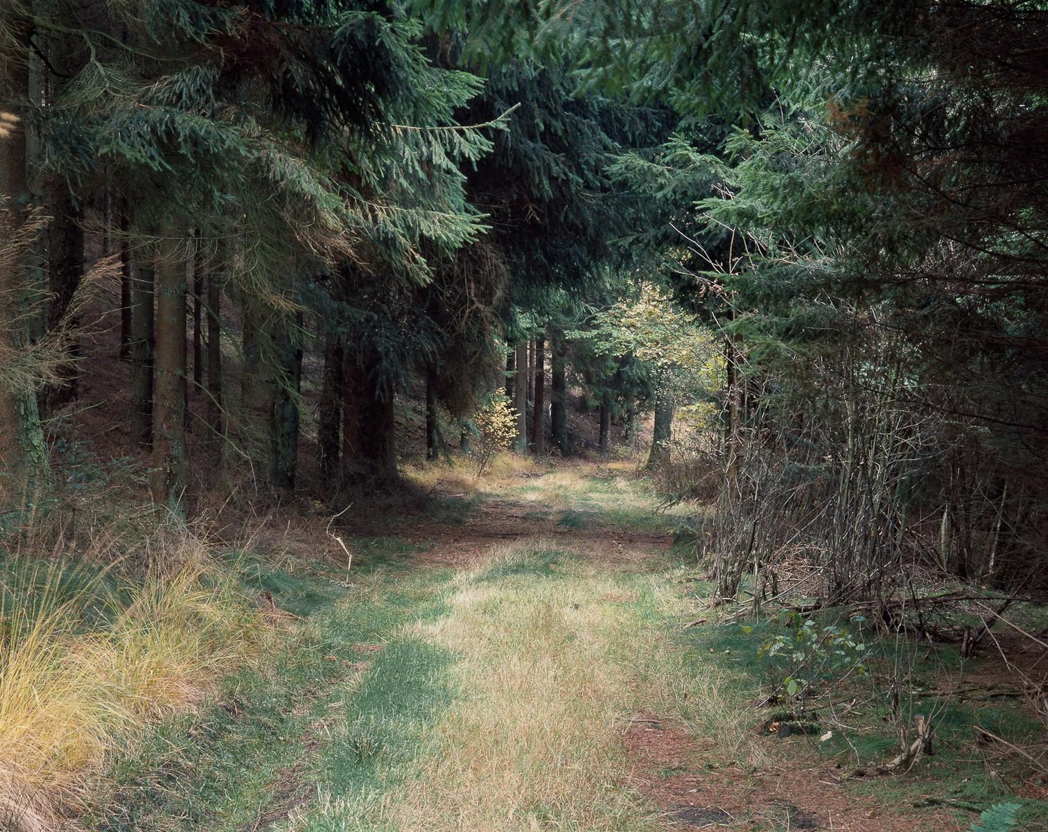 torben eskerod - beyond the rush 3
