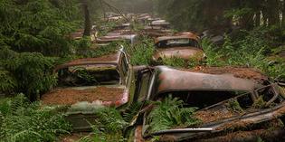 chatillon-car-graveyard-abandoned-cars-cemetery-belgium-fb.jpg