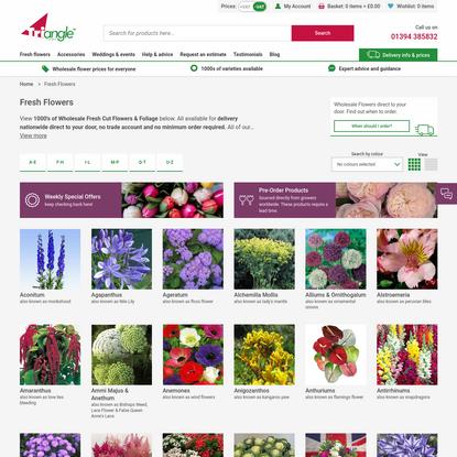 Wholesale Dutch Flowers Direct UK | Online Wholesale Florist Supplies UK